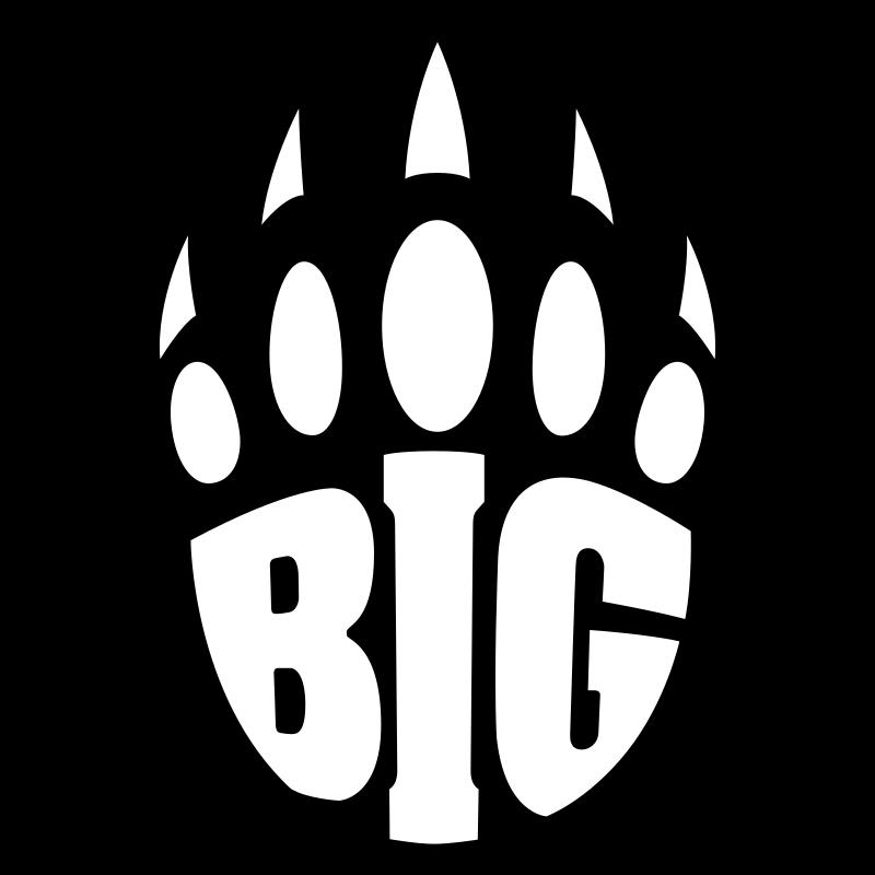 Big-academy